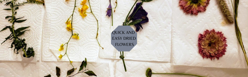 QUICK AND EASY DRIED FLOWERS copy.png